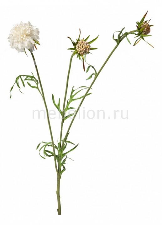 Цветок (70 см) Скабиоза 22000300