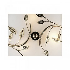 Накладной светильник Odeon Light 2728/3C Regana