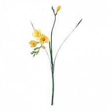 Цветок (60 см) Фрезия 56004800
