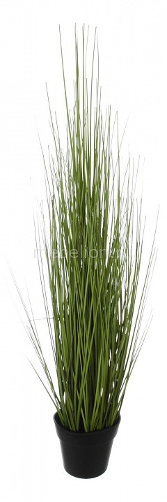 Растение в горшке Home-Religion (60 см) Трава 58006000 home religion 58 см декоративная трава 56001100