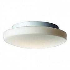 Накладной светильник Bagno SL500.552.03
