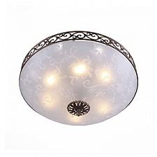 Накладной светильник ST-Luce SL244.202.06 SL244