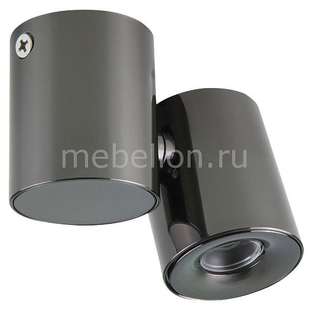 Светильник на штанге Lightstar Punto 051127