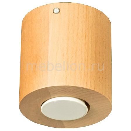 Накладной светильник Дубравия Ротондо 226-70-61 накладной светильник дубравия кватро 225 70 61