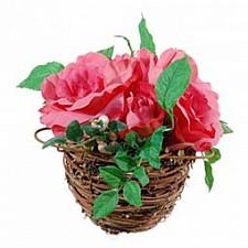 Растение в горшке Home-Religion (17 см) Розовые розы 56000100