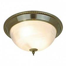 Накладной светильник Arte Lamp A1305PL-2AB Porch