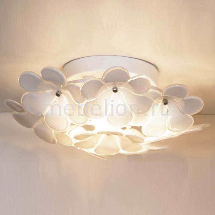 Накладной светильник Lussole Asinara LSA-5107-03 накладной светильник lussole asinara lsa 5107 05