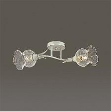 Светильник на штанге Lumion 3108/2C Rozetta