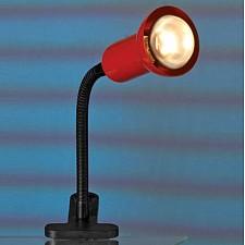 Настольная лампа офисная Warshawa LST-4534-01