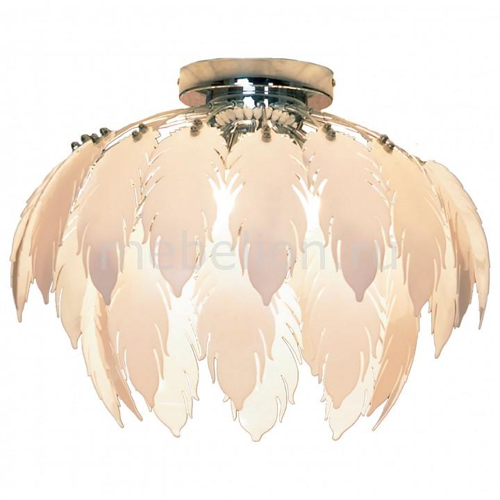 Накладной светильник Lussole LSQ-1907-05 Vercelli