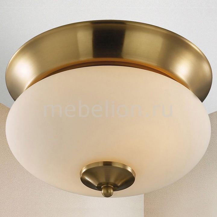 Накладной светильник Favourite Isola 2608-2C