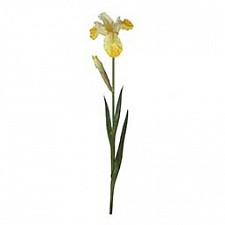 Цветок (80 см) Ирис 58016800