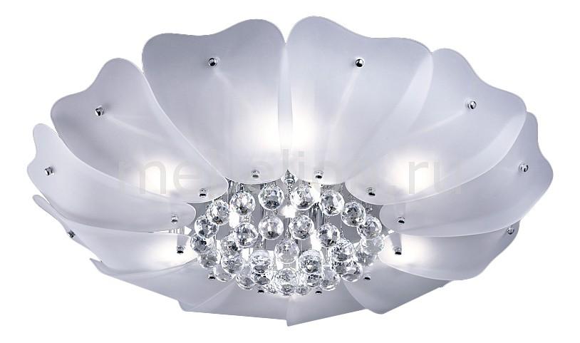 Накладной светильник Lightstar 804040 Lobo