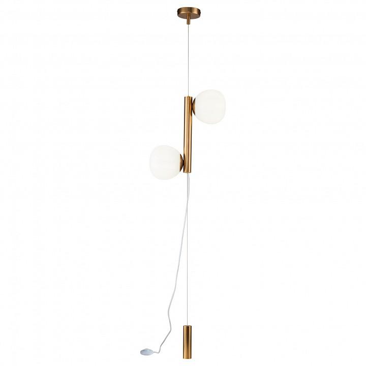 Купить Светильник на растяжке Erich MOD221FL-01G, Maytoni