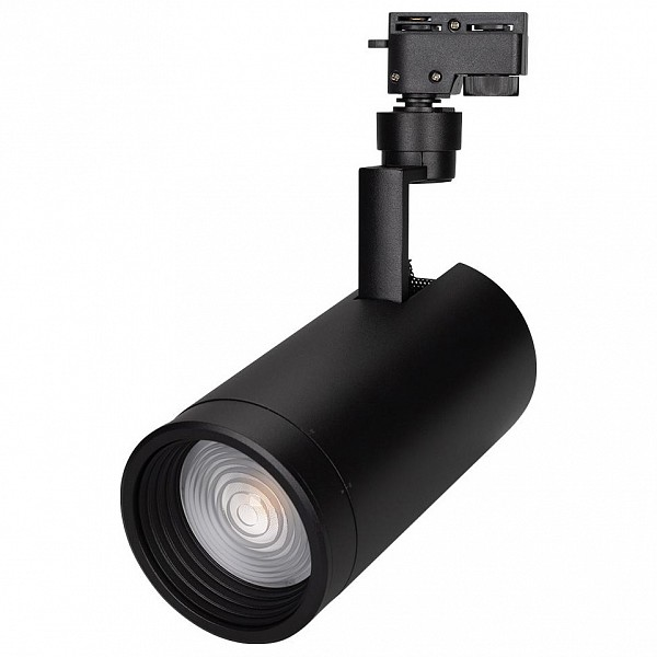 Светильник на штанге Lgd-Zeus LGD-ZEUS-2TR-R100-30W Day5000 (BK, 20-60 deg)