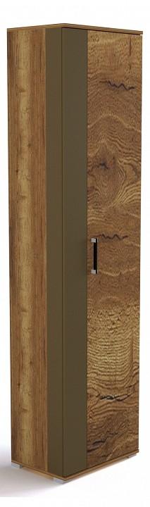 Шкаф платяной Ханна ПХ-1
