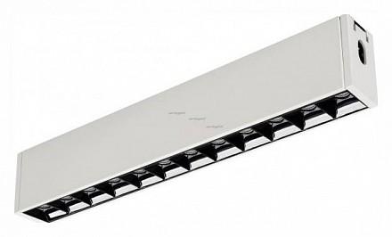Модульный светильник CLIP-38-LASER-S330-12W Warm3000 (WH, 36 deg, 24V) 029006