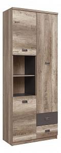 Шкаф комбинированный Малькольм REG 3D2S