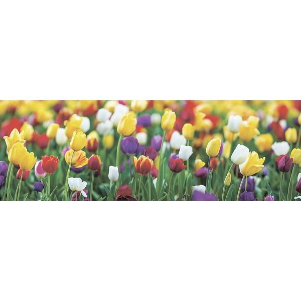 Картина (90х30 см) Поле тюльпанов SE-102-308 фото