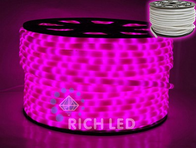 Шнур световой RL-DL-2WHM-100-240-P