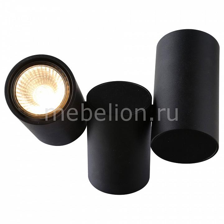 Настенный светильник Divinare DV_1354_04_PL_2 от Mebelion.ru