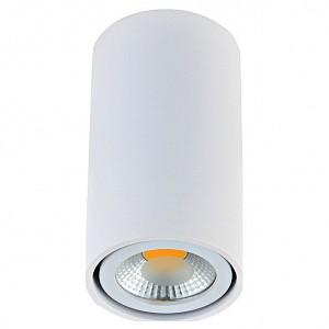 Накладной точечный светильник N1595 DO_N1595White_RAL9003