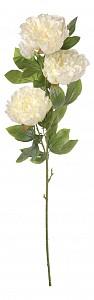 Цветок (105 см) Пион E4-PB