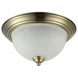 Накладной светильник Planum FR2913-CL-03-BZ