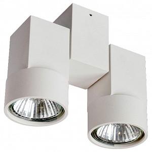 Светильник на штанге DL18435/12WW-White