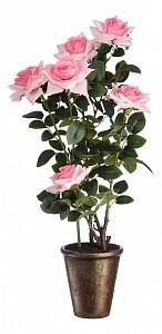Растение в горшке (74 см) Роза кустовая YW-37