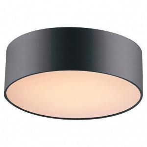 Накладной светильник Cerchi 1514-2C1