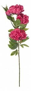 Цветок (105 см) Пион E4-PS