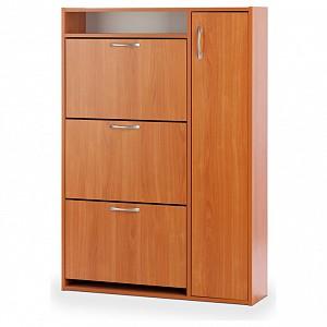 Шкаф для обуви ШК-3 VEN_10000082