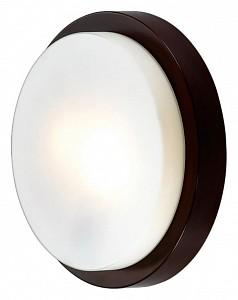 Накладной светильник Holger 2744/2C