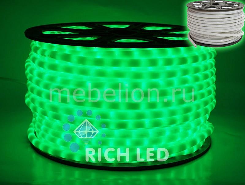 Шнур световой RL-DL-2WHM-100-240-G