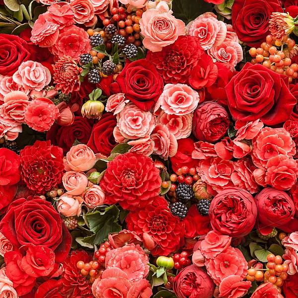 Картина (40х40 см) Красные розы HE-101-930 фото
