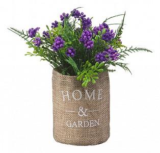 Растение в горшке (17 см) Кипарис в мешочке B40-purple