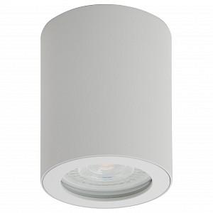 Накладной светильник DK3007 DK3007-WH