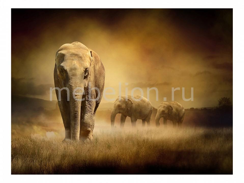 Панно Ekoramka (80х60 см) Слон 114974025