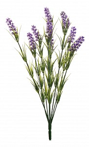 Набор из 48 цветков Лаванда 8J-12MB0001