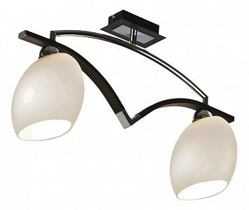 Накладной светильник 269-127-02
