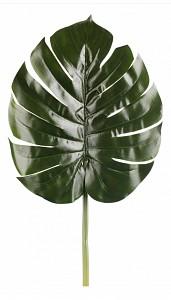 Зелень (70 см) Широкий лист 21004300
