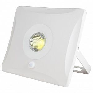 Настенный прожектор ULF-F31 UL-00000781