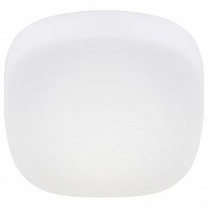Накладной светильник Nuvola Aria 266/20PF-LEDWhite