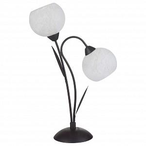 Светодиодная настольная лампа Bagheria GRLSF-6294-02