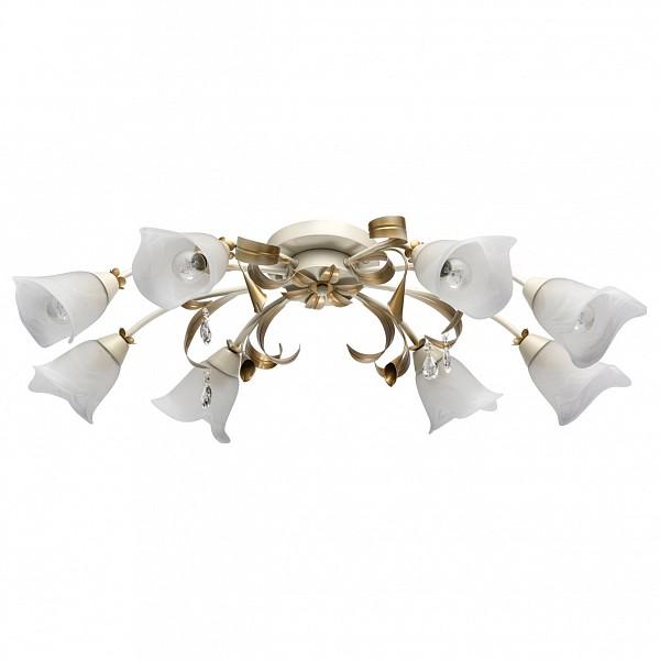 Настольная лампа декоративная Восторг 21 242017508 MW-Light MW_242017508