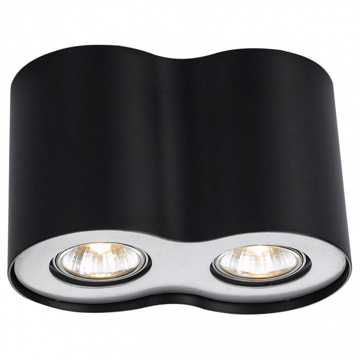 Купить Накладной светильник Falcon A5633PL-2BK, Arte Lamp