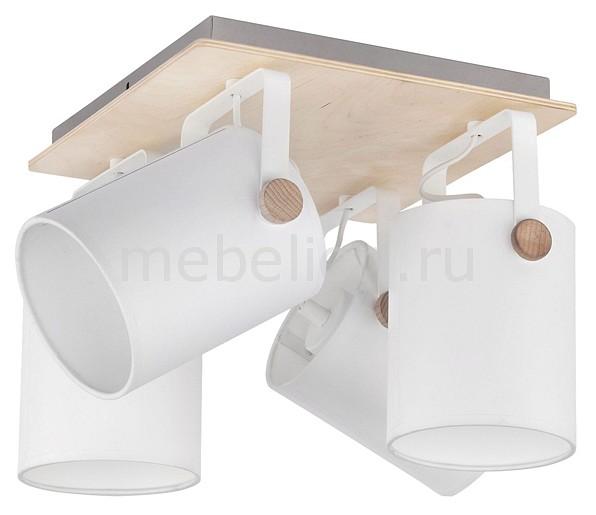 Настенный светильник TK Lighting EV_76269 от Mebelion.ru