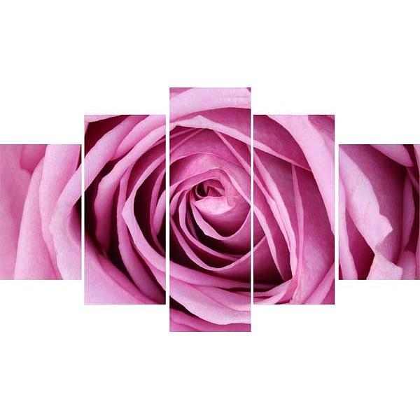 Набор из 5 картин (100х70 см) Розовая роза HE-107-246 фото