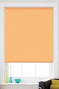 Штора рулонная (115x170 см) Sky/25
